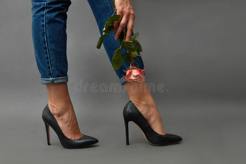 Beautiful female legs in black shoes with heels and jeans, a woman`s hand with a tattoo is holding a pink rose on a dark royalty free stock photo