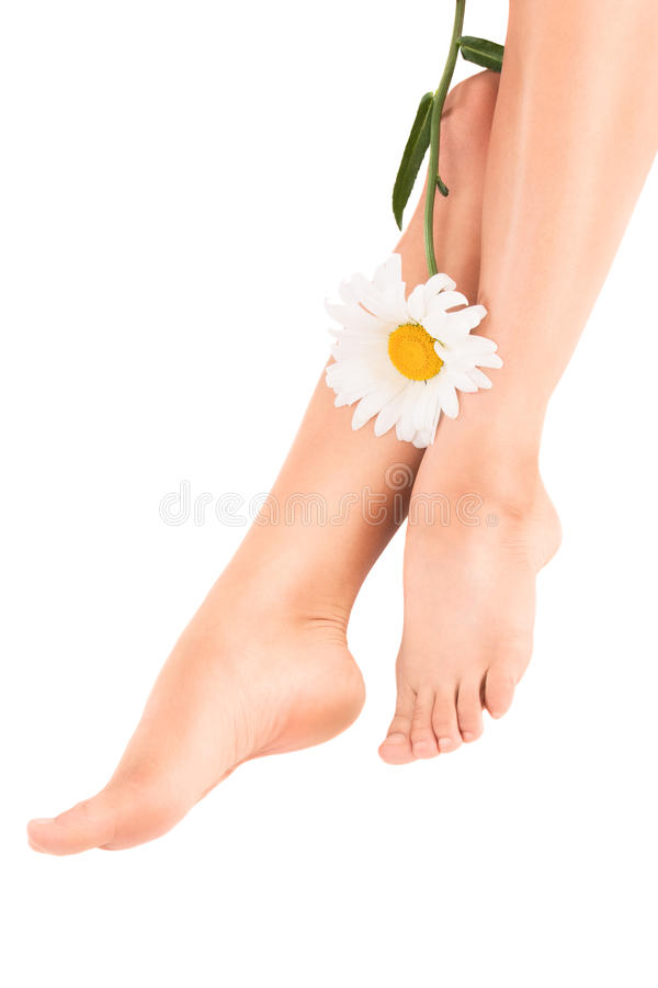 Free Beautiful Female Legs With Flower Stock Image - 23207921