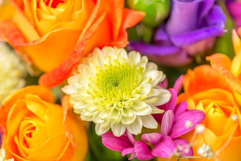 Festive flowers bouquet with chrysanthemum and orange royalty free stock photo
