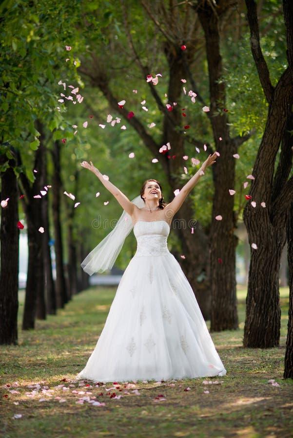 Download Beautiful fiancee stock photo. Image of fiancee, leaf - 25905670