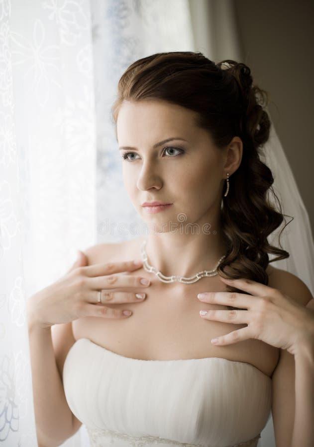 Download Beautiful fiancee stock image. Image of wedded, fiancee - 27492591