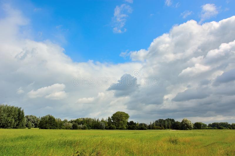 Beautiful field and impressive clouds in Ghent-Bruges. Beautiful field and impressive compact clouds in Ghent-Bruges. In a huge Parc called:de brugse meersen royalty free stock photography