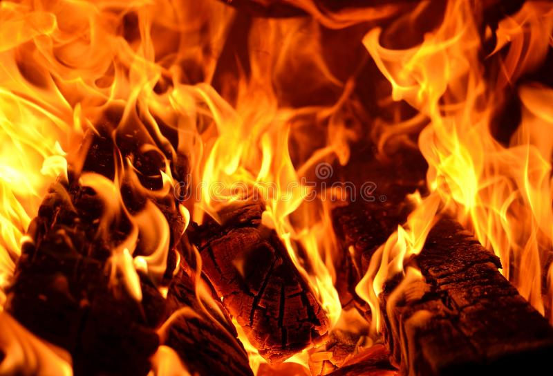 Beautiful fire flames. Closeup. Flame of the Fire. Texture of burning wood and flame. stock photography