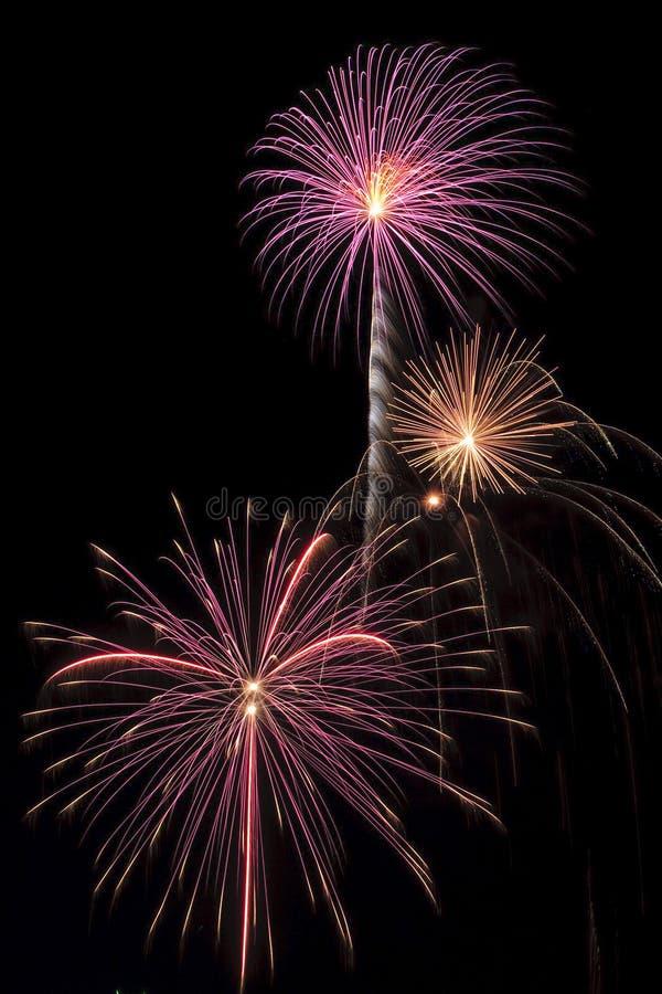 Free Beautiful Fireworks Display Lights Up The Nighttime Sky Stock Image - 11248861