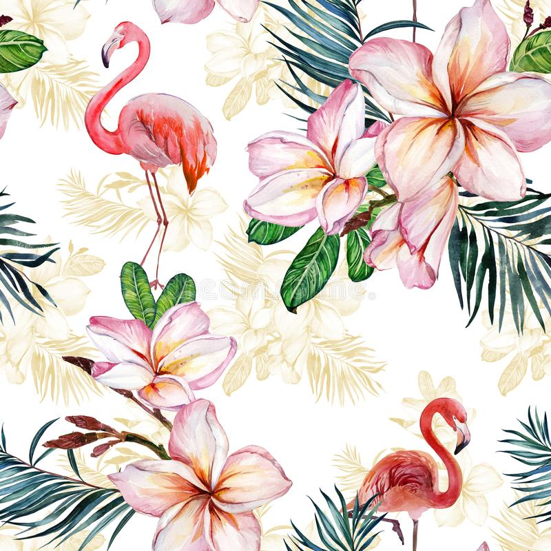 Beautiful flamingo and plumeria flowers on white background. Exotic tropical seamless pattern. Watecolor painting. Hand painted illustration. Wallpaper, fabric royalty free illustration