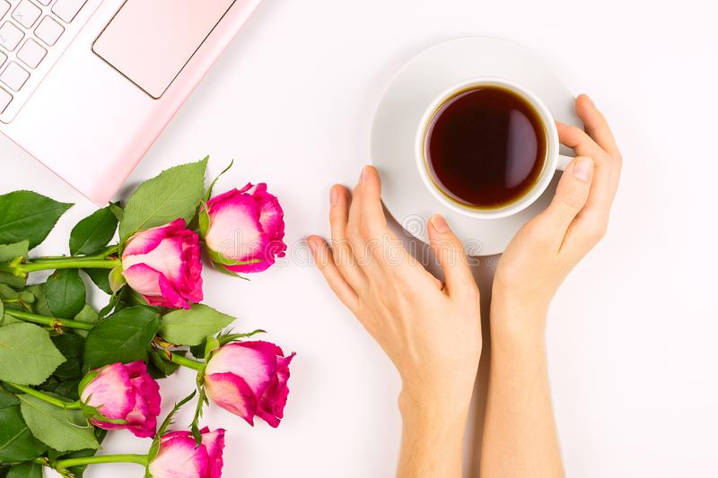 Beautiful flatlay with a cup tea in a woman`s hand, laptop and roses, concept of good morning or woman`s workspace. White background stock photography