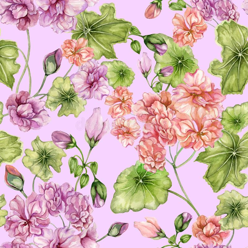 Beautiful floral background with pelargonium flowers and leaves. Seamless botanical pattern. Watercolor painting. Hand painted vector illustration