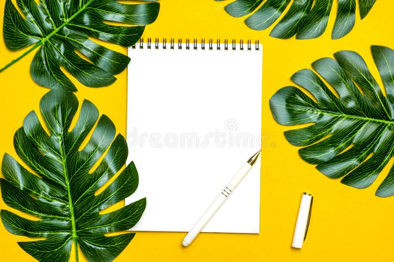 Beautiful floral background of tropical tree leaves monstera and palm, orchid flower with a space for a text, flat lay. Composition Summer, exotic, travel stock image