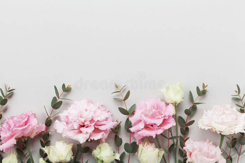 Beautiful floral border of pastel flowers and green eucalyptus leaves on gray table top view. Flat lay style. Beautiful floral border of pastel flowers and royalty free stock images