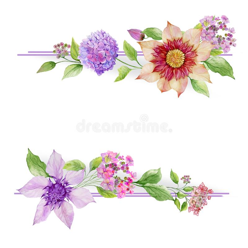 Beautiful floral border. Soft hydrangea and clematis flowers with green leaves on white background. vector illustration