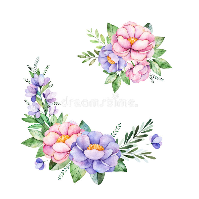 Beautiful Floral Collection With Peony,flowers,leaves ...