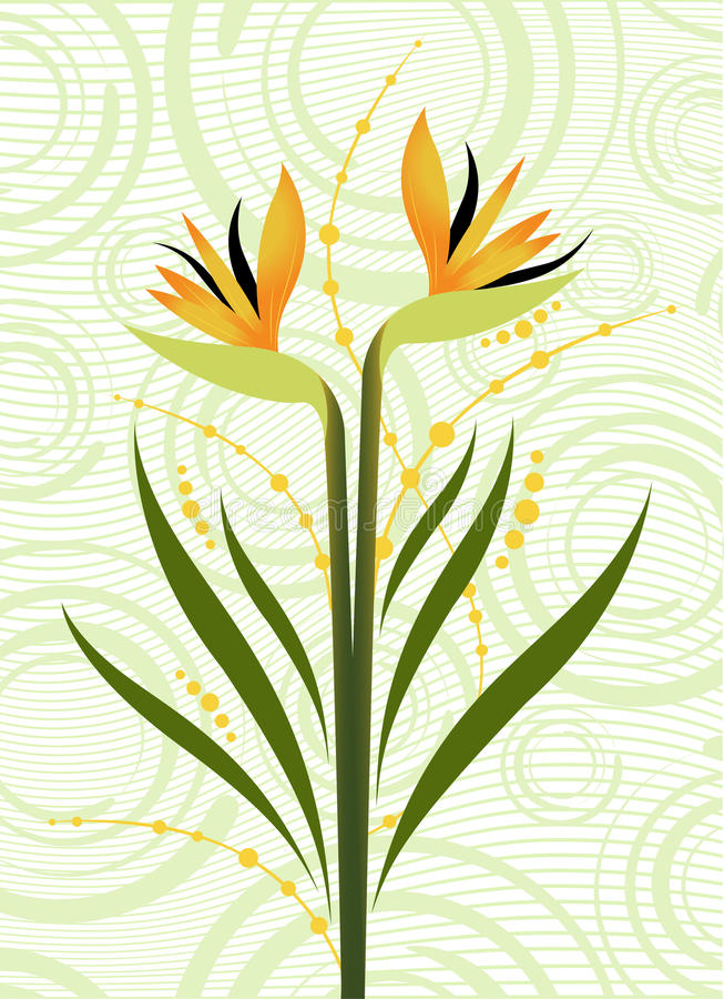 Download Beautiful floral design stock vector. Illustration of texture - 10162704