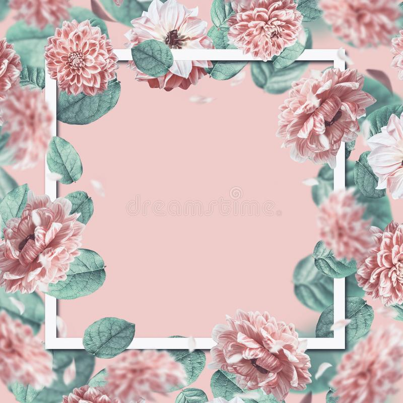 Beautiful floral frame with falling or flying pink flowers and leaves at pastel background. royalty free stock image