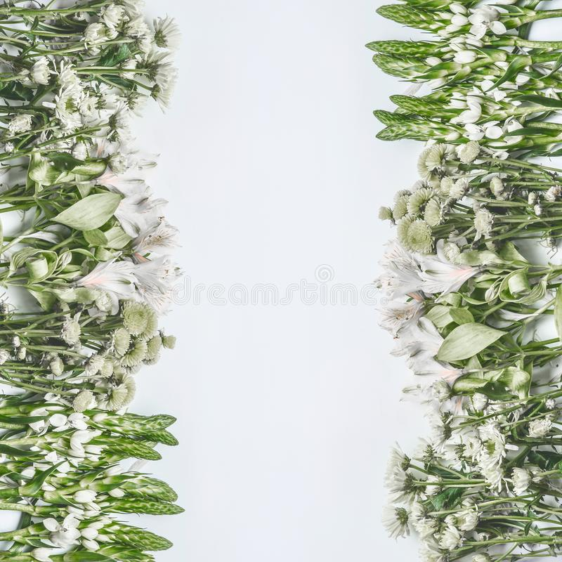 Beautiful floral frame layout with green flowers on white background royalty free stock image