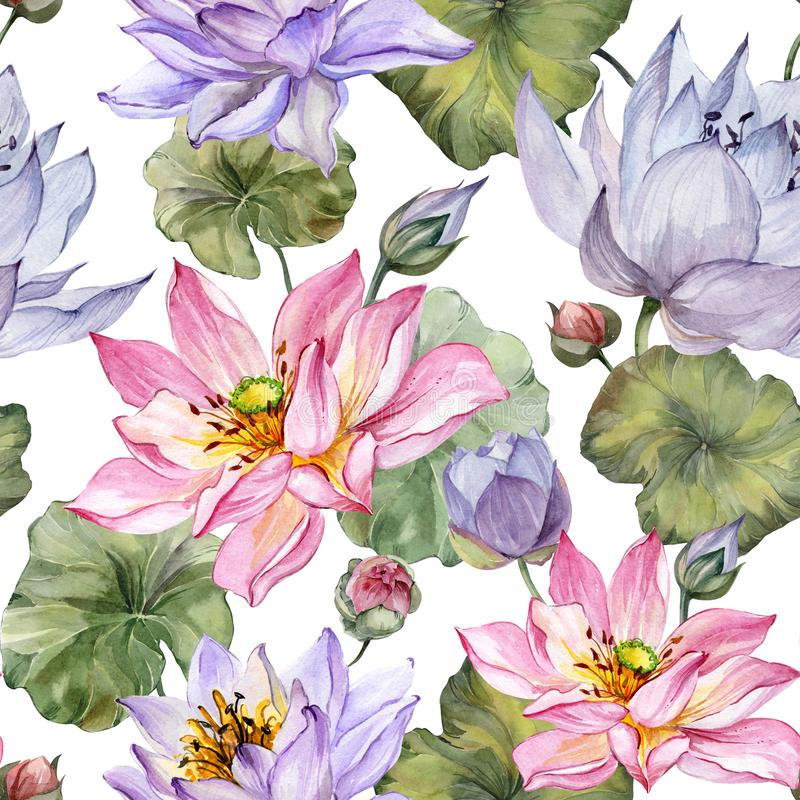 Beautiful floral seamless pattern. Large pink and purple lotus flowers with leaves on white background. Hand drawn illustration. Watercolor painting. Design of royalty free illustration