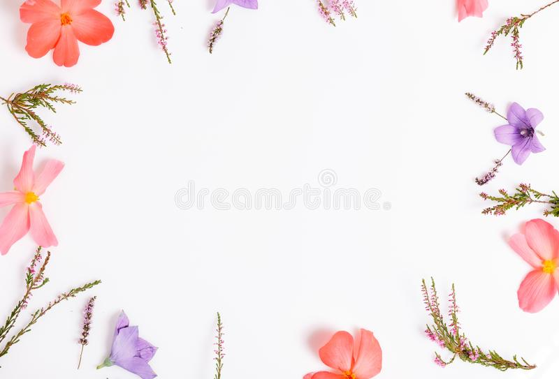 Beautiful Floral top border. Floral arrangement of violet and orange flowers on isolated white background for design. royalty free stock photo