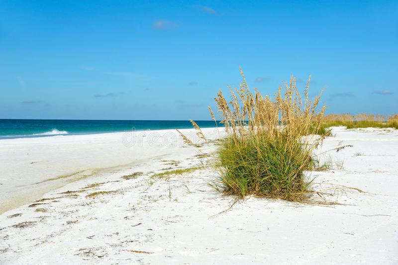 Beautiful Florida Coastline. Beautiful Coastline on Anna Maria Island, Florida stock image