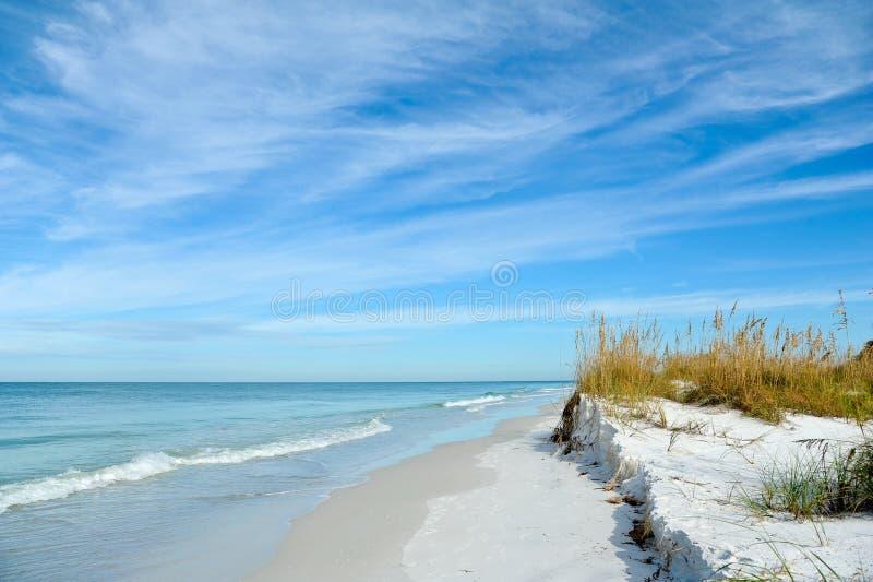 Beautiful Florida Coastline. Beautiful Sand Dunes and Sea Oats on the Coastline of Anna Maria Island, Florida stock photo