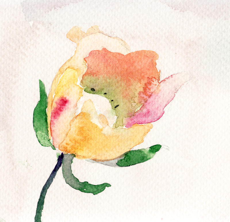Download Beautiful flower stock illustration. Image of painting - 27436750