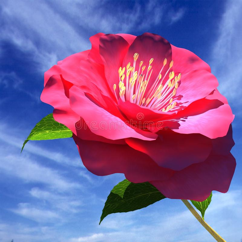 Beautiful Flower royalty free stock photos