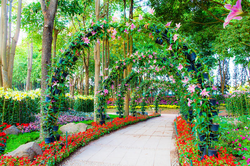 Beautiful flower arches with walkway in ornamental plants for Plantas ornamentales para parques