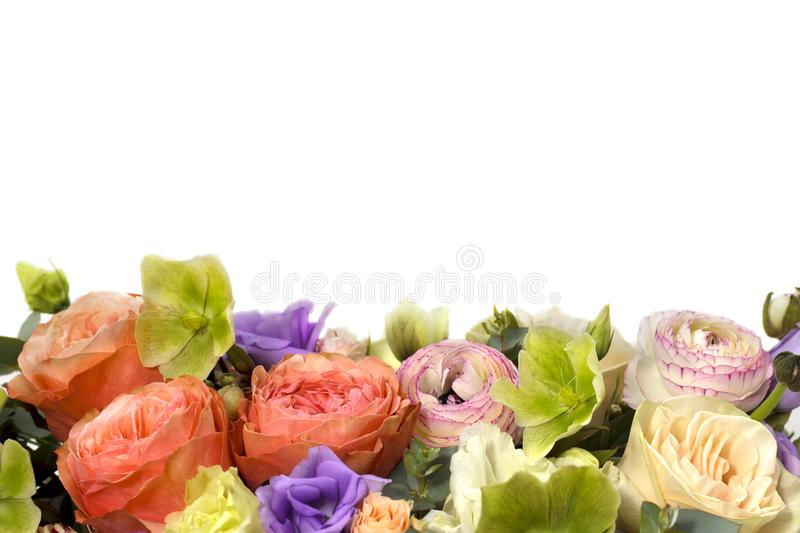Beautiful flower arrangement on white background floral background stock photo