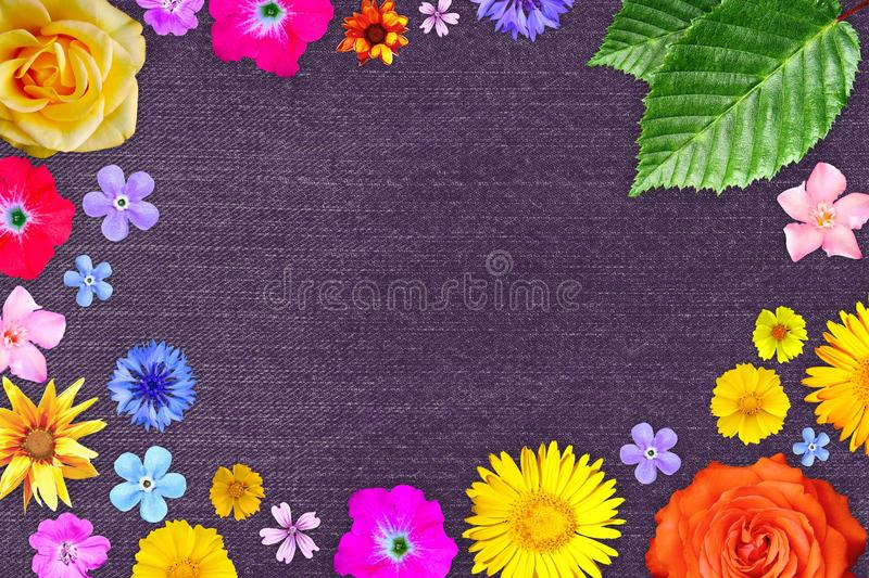 Beautiful flower frame with empty in center on purple denim fabric background. Floral composition of spring or summer flowers. stock photos