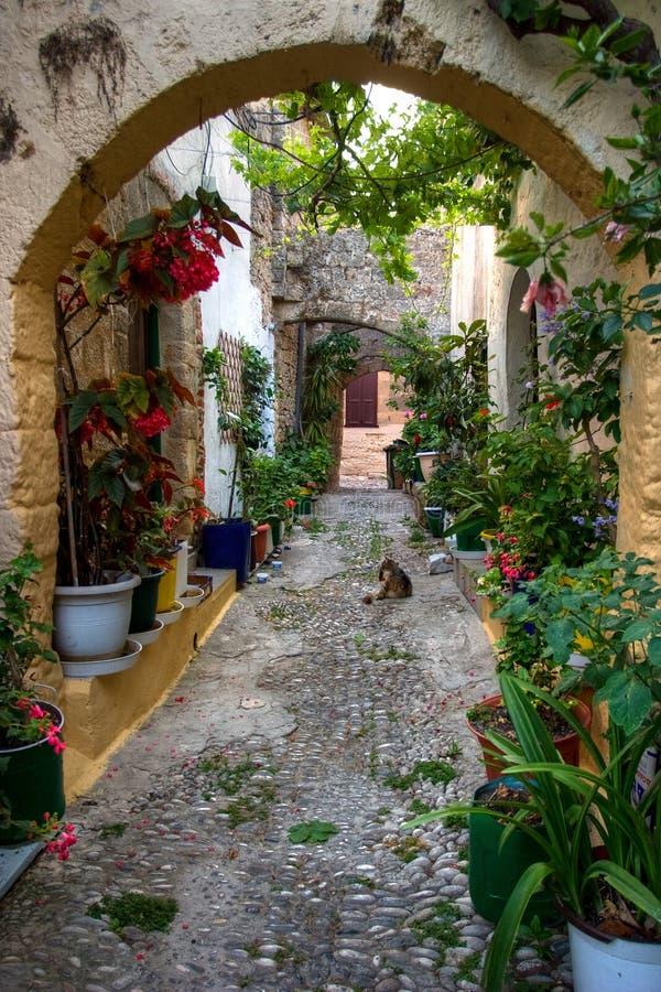 Beautiful flower garden. On Rhodes, Greece stock image