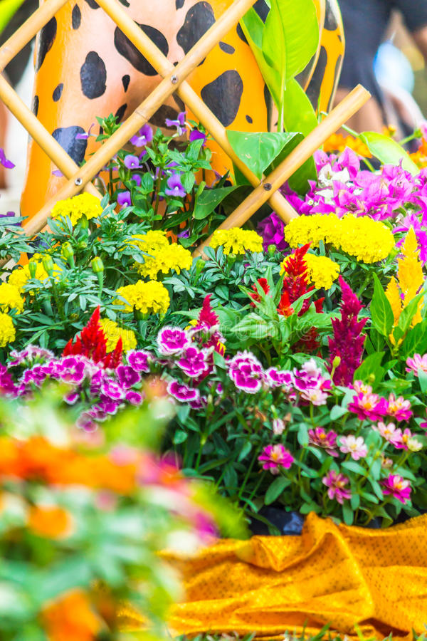Beautiful flower garden on summer. Picket fence surrounded by flowers in a front yard on summer royalty free stock photo