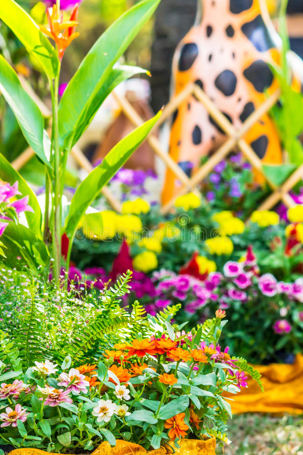 Beautiful flower garden on summer. Picket fence surrounded by flowers in a front yard on summer royalty free stock photography