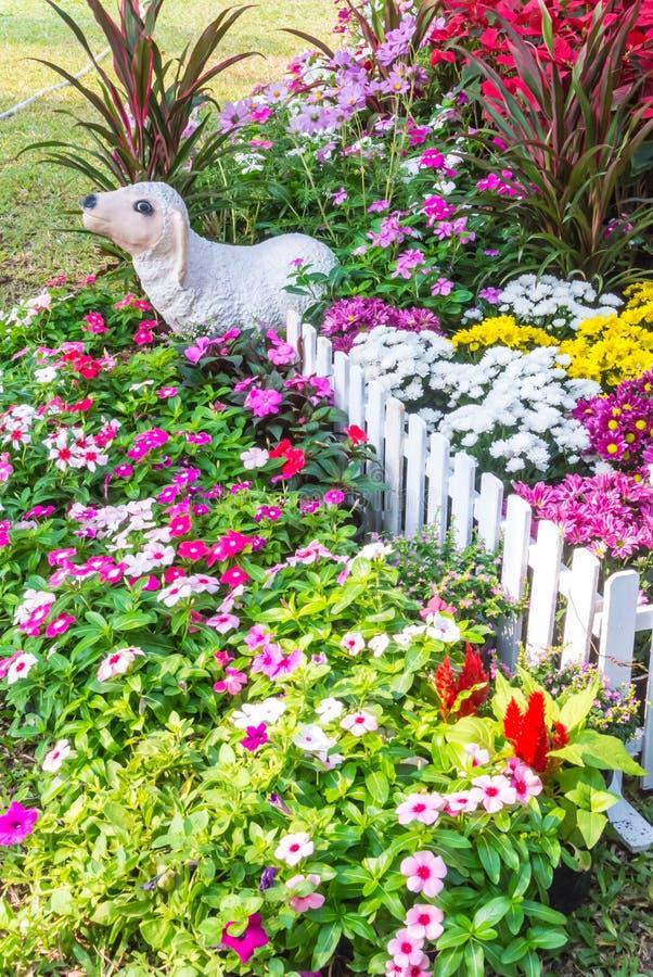 Beautiful flower garden. stock image. Image of design - 51019471