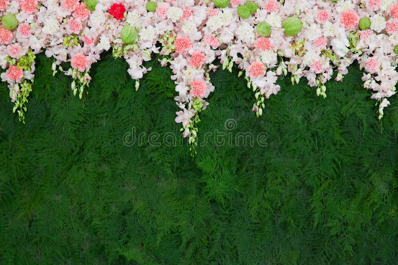 Beautiful flower and green leaf background for wedding ceremony royalty free stock photography