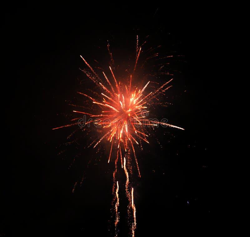 Beautiful flower-like fireworks stock image