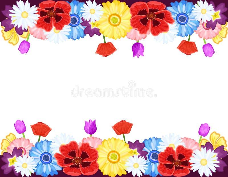 Beautiful flowers borders vector illustration