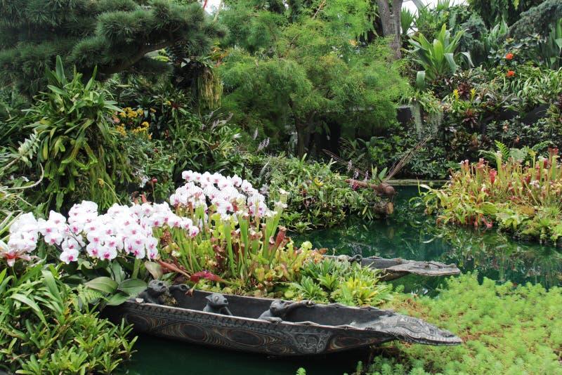 Beautiful flowers flora plant garden. Beautiful flowers flora color garden royalty free stock images