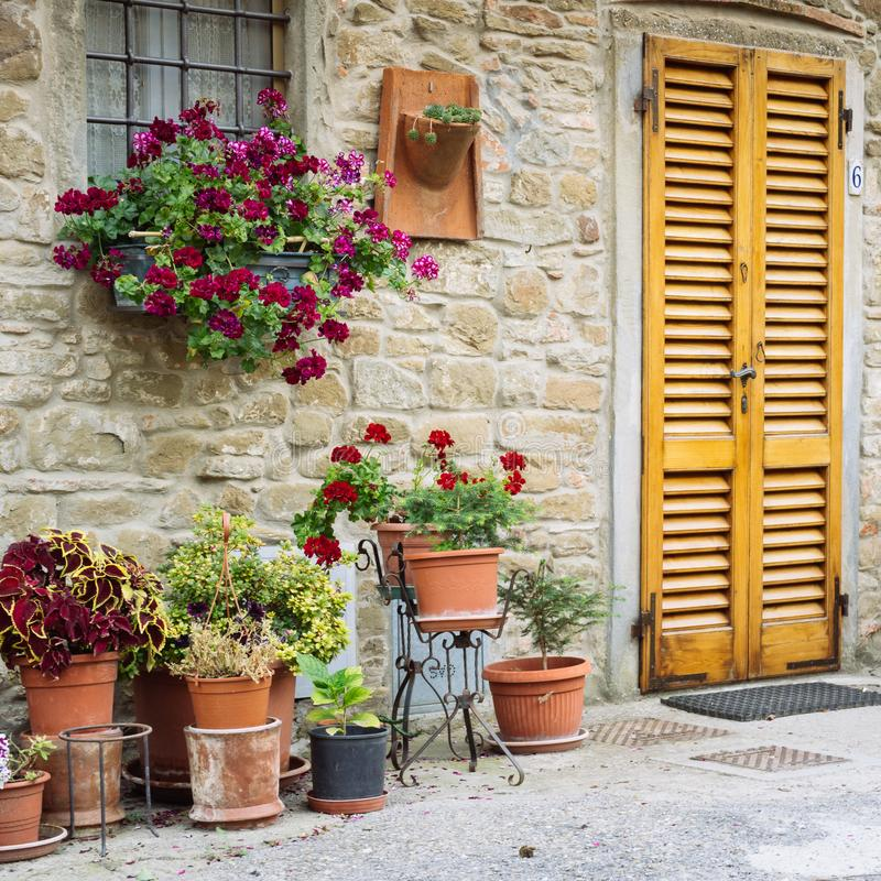 Beautiful flowers in front of stone wall in a small village of medieval origin. Volpaia, Tuscany, Italy. Square shape. Beautiful flowers in front of stone wall stock images