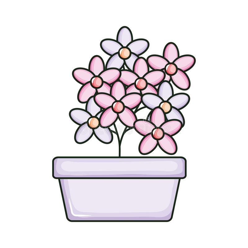 Beautiful flowers garden in square ceramic pot. Vector illustration design stock illustration