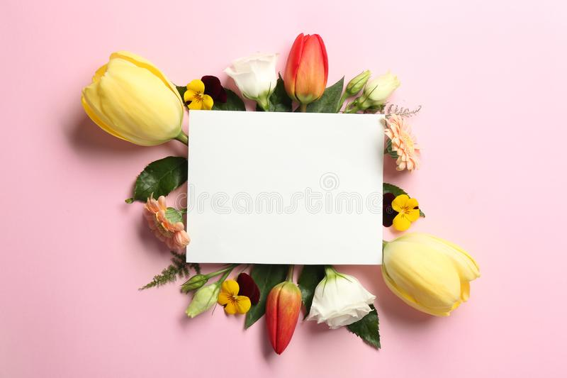 Beautiful flowers and green leaves as floral frame and paper card royalty free stock photography