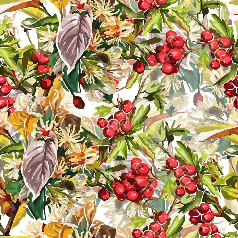 Beautiful flowers, leaves and rowan vector illustration