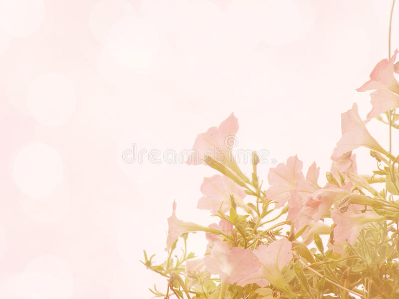 Beautiful flowers made with vintage color filters. Beautiful flowers made with color filters stock illustration