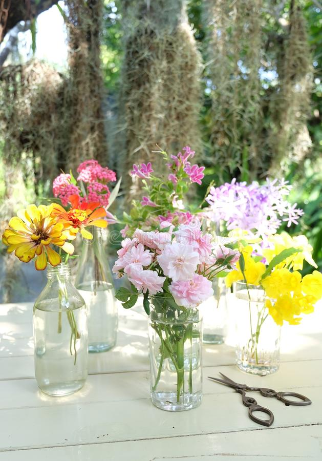 Beautiful flowers of many colors. In vase stock image