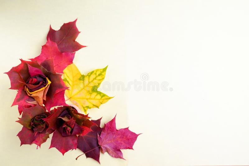 Beautiful flowers from maple autumn leaves. A place for a label stock photography