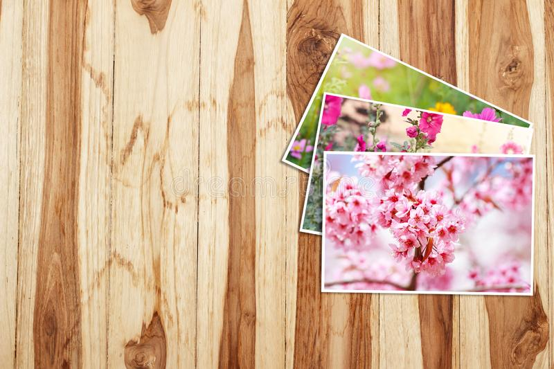 Beautiful flowers photos on old wooden table royalty free stock image