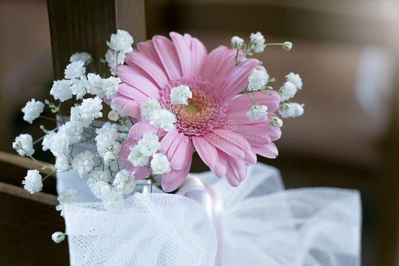 Beautiful flowers of pink Gerbera daisies royalty free stock photos