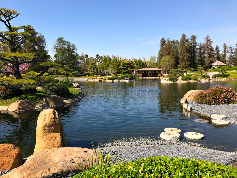 Beautiful flowers and trees in Japanese Garden stock photos