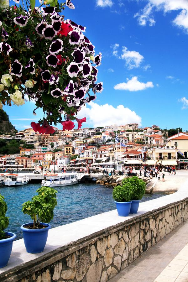 Beautiful flowers with view of small city Parga royalty free stock photography