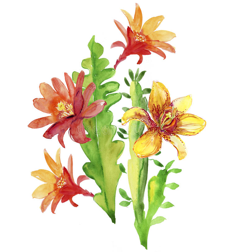 Beautiful flowers, watercolor illustration vector illustration