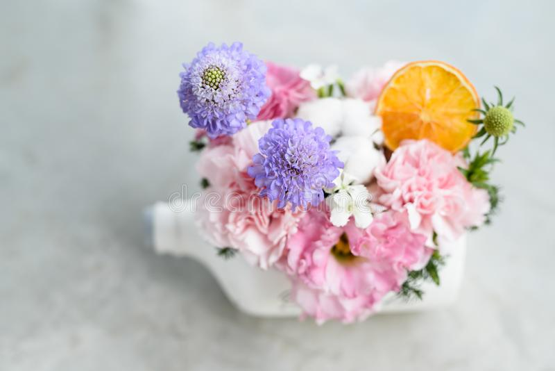 Beautiful flowers and tree potted in white bottle pot stock images
