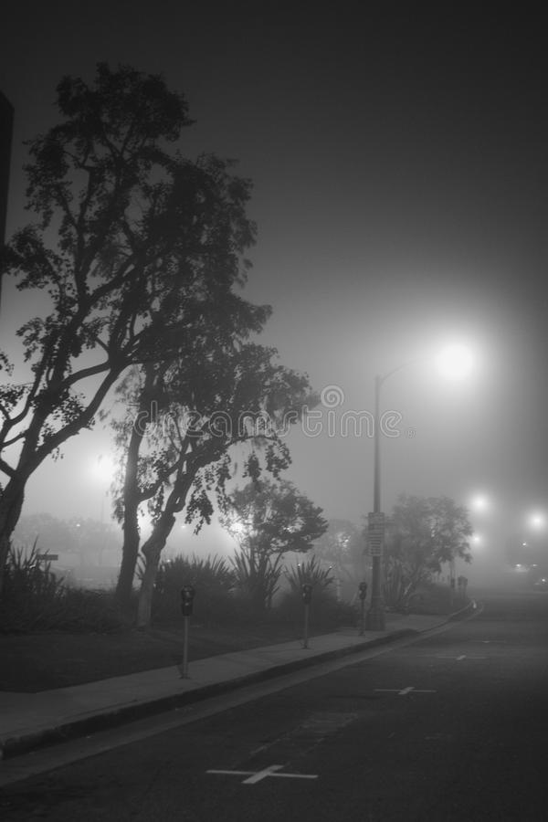 A beautiful foggy evening stock images