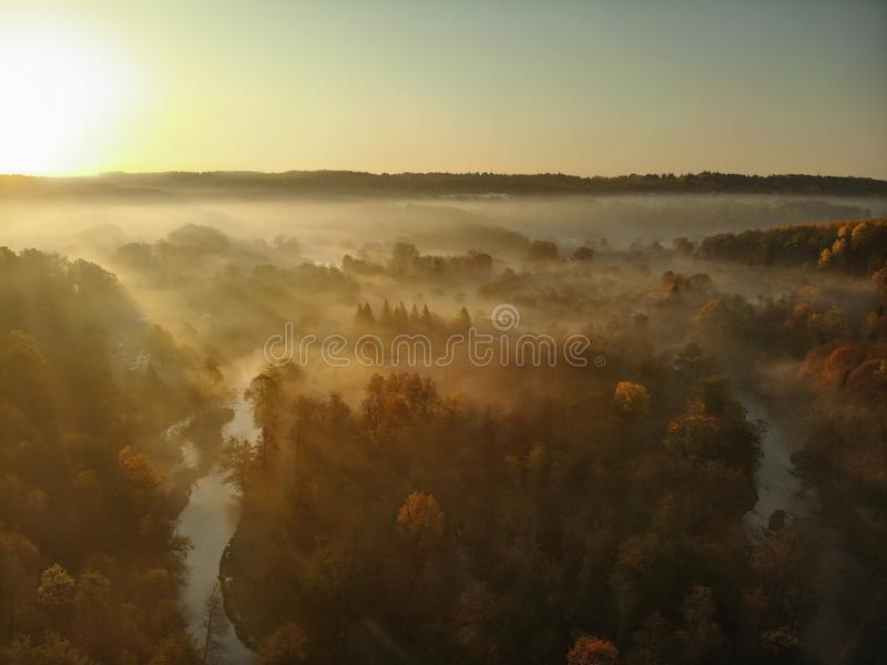 Beautiful foggy forest scene in autumn with orange and yellow foliage. Aerial early morning view of trees and river stock photos